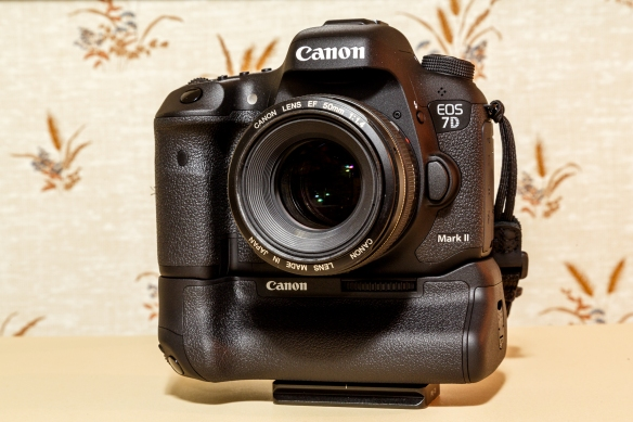 The new 7D Mark II, released November 1st, 2014. This feature-packed crop sensor dSLR from Canon excels at high ISO performance compared to its predecessor and market competitors.